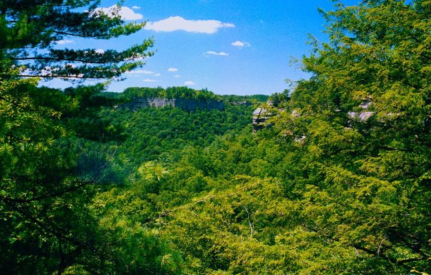 Rough-Trail-Overlook-Wide-RRG-2013-0801-OM4-Portra-400-37