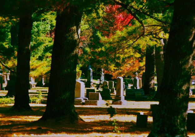 Fall-in-the-Cemetery-LexCem-2013-1105-OM4-Portra40022