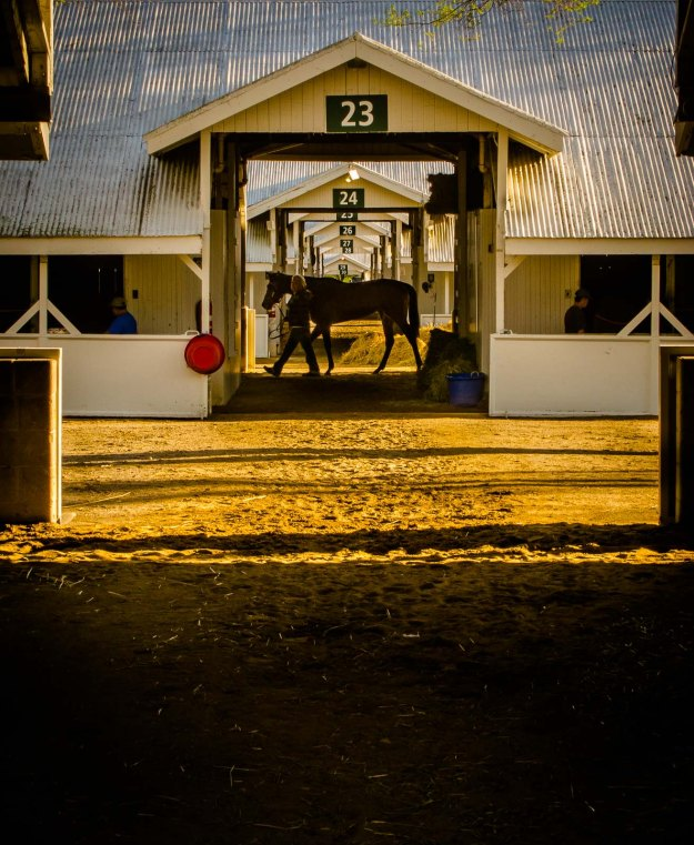 Morning Barns-Keeneland-IMG_2622