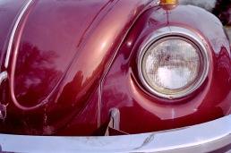 """Bug Eye"" Canon F-1, Kodak Portrra 400"
